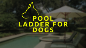 Pool Ladder For Dogs