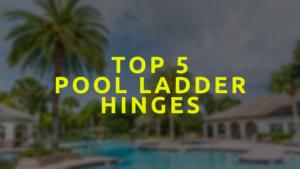 Pool Ladder Hinges
